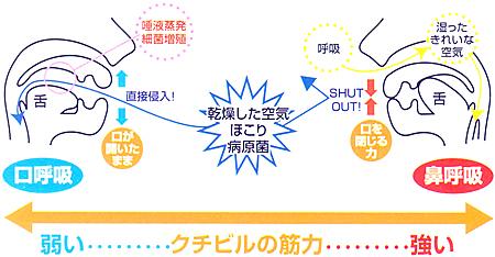 パタカラ/口の筋力増強用品図