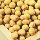 歯槽膿漏,歯周病と活性酸素除去食品大豆