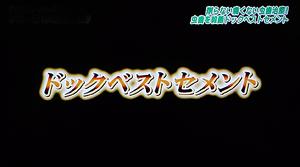 ドックベストセメント治療東京テレビ1