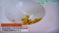 ドックベストセメント治療東京テレビ4