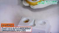 ドックベストセメント治療東京テレビ5