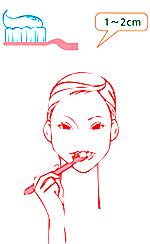 歯のエナメル質修復歯磨きアパガードリナメル使用法1