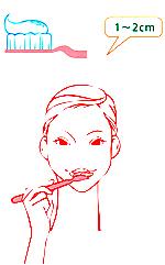 歯のエナメル質修復歯磨きアパガードリナメル使用法2