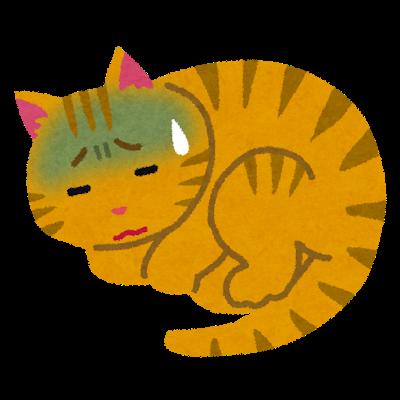 Dog Cat Perio