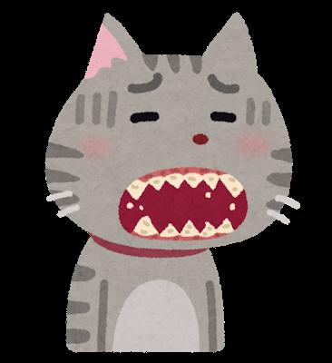 犬猫歯周病口臭予防寿命