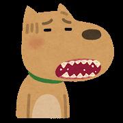犬猫歯周病口臭予防症状