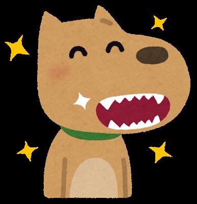 犬猫歯周病口臭予防簡単